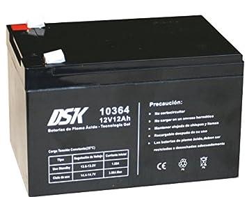 DSK 10364 - Batería Plomo tecnología Gel 12V 12 Ah, Negro: Amazon.es: Electrónica