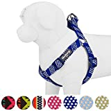 Blueberry Pet 4 Colors Step-in Artisan Crochet Inspired Endless Squares Dog Harness, Chest Girth 26'' - 39'', Royal Blue, Large, Adjustable Harnesses for Dogs