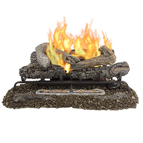 vent free gas logs with remote - 2