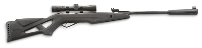 9. Gamo Whisper Silent Cat Air Rifle