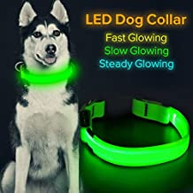 HiGuard LED Dog Collar, USB Rechargeable Glowing Pet Collar Night Safety LED Light Up with Nylon Webbing Perfect for Small, Medium, Large Dogs by (Medium)