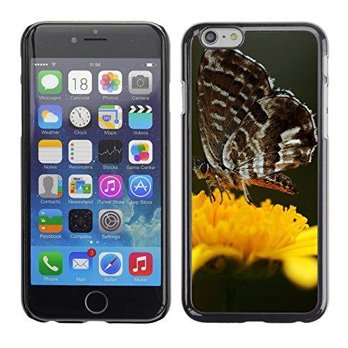 """Premio Sottile Slim Cassa Custodia Case Cover Shell // V00003067 papillon sur une fleur jaune // Apple iPhone 6 6S 6G PLUS 5.5"""""""