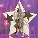 Shindigz Holographic Silver 3D Star Centerpiece Set of 6
