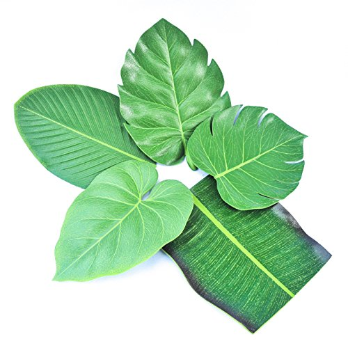 [Coasters Leaf Shape Green Drink Coasters Set of 5 Leaves] (Easy Halloween Cold Appetizers)
