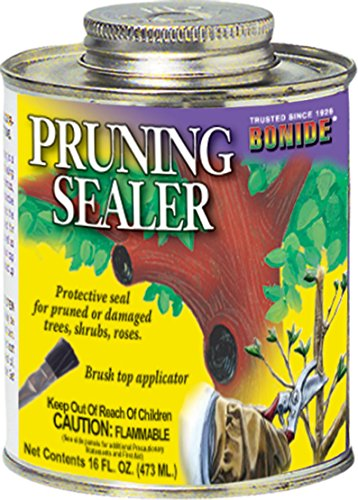pruning-sealer-brush-top-1-pint