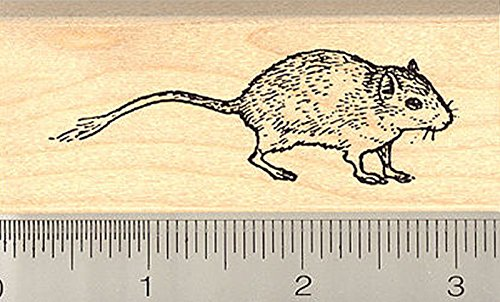 Gerbil Rubber Stamp<br>Wood Mounted