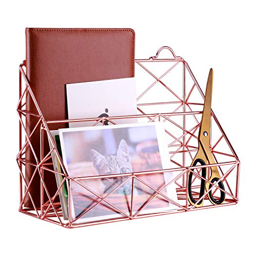 Simmer Stone Rose Gold Mail Organizer, Plated Wire Metal Wall Mountable Multifunction Storage Rack, Organizer for Mails Books Files Brochures Postcards Makeups and More, 2 Slot, Size 9.8