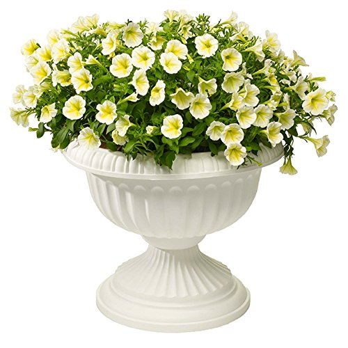Novelty Grecian Urn Planter, White, 18-Inch by Novelty