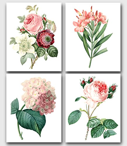 (Set of 4 Pink Botanical Prints, Roses, Laurier, Hydrangea Flowers, 8 x 10 Inches, Unframed)