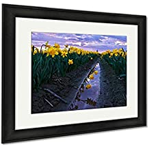 Ashley Framed Prints Daffodils Fild At Sunset And Reflection In Water, Office/Home/Kitchen Decor, Color, 30x35 (frame size), Black Frame, AG6541009