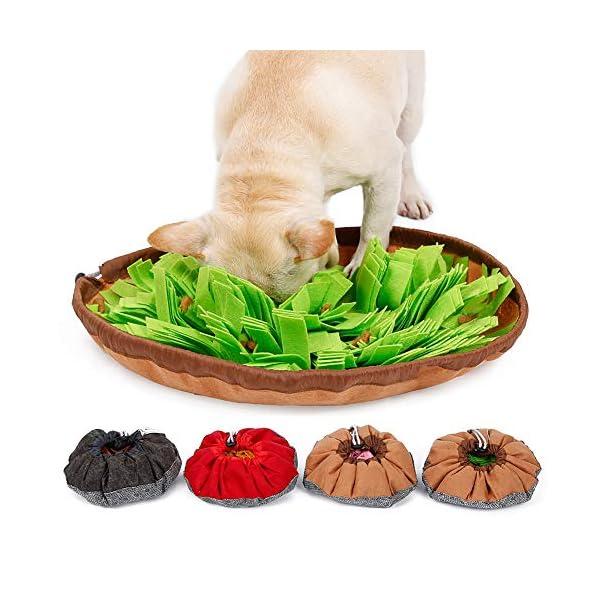 RC GearPro Dog Snuffle Bowl Mat Pet Cat Snuffling Nose Work Mat IQ Training Slow Eat Bowl, Encourages Natural Foraging Skills Dog Feeding Blanket (green) 1