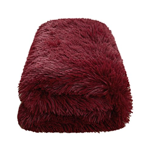 Oversized Softest Warm Elegant Cozy Faux Fur Home Throw