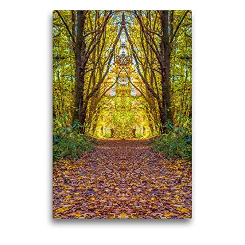CALVENDO Toile Textile de qualité supérieure de 50 cm x 75 cm - Un Motif du Calendrier du Monde des Autres, miroirs du forêt, Tableau sur châssis Art Toile Murale décorative
