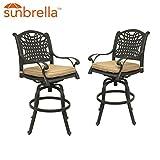 Table & Chair Designs  Malibu Cast Aluminum Patio 30'' Bar Height Swivel Bar Stool with Sunbrella Premium Cushions (Set of 2)
