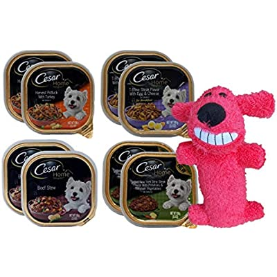 Cesar Home Delights Dog Food 4 Flavor 8 Can with Toy Bundle: (2) Harvest Potluck Turkey, (2) Grilled NY Strip Steak, (2) Beef Stew, (2) T-Bone Steak Egg Cheese, (1) Toy (3.5 Ounces)