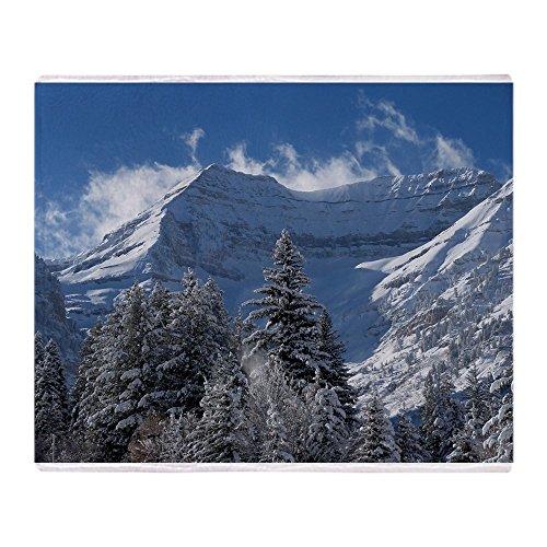 CafePress Beautiful Mountain Scene Soft Fleece Throw Blanket, 50