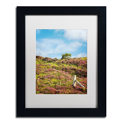 picture of Trademark Fine Art Moorland's Color by Philippe Sainte-Laudy White Matte and Black Frame, 11 by 14-Inch