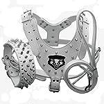 haoyueer Medium & Large Dog Leather Spiked Studded Dog Harness,Collar & Leash 3Pcs Set for Pit Bull,Mastiff, Boxer, Bull Terrier 17