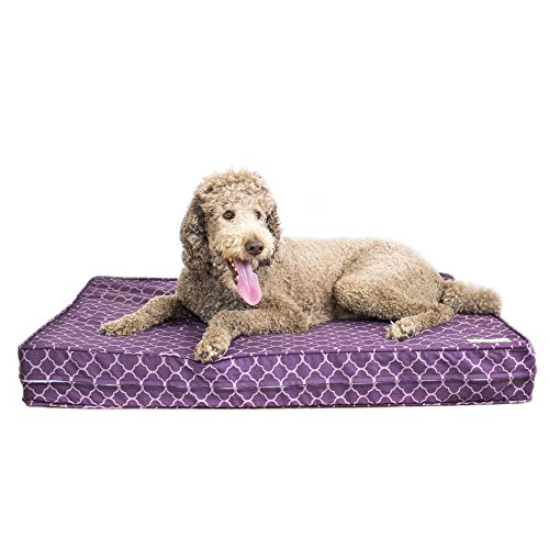 Dog Bed - Purple | Orthopedic Gel Memory Foam - Made in the USA | Durable 100% Cotton Canvas Cover | Waterproof Encasement | Machine Washable | Small, Medium & Large Dogs