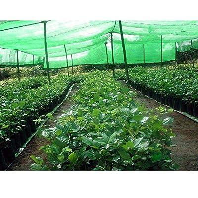 Per Newly Garden Netting Plant Cover Sunblock Shade Cloth Cover Sun Net Sun Mesh UV Resistant Net for Plant, 4x5M : Garden & Outdoor