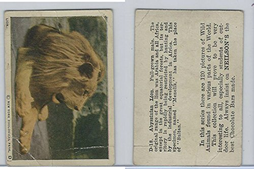 V67 Neilson's Chocolate, Wild Animals, 1930's, D18 Abyssinian Lion