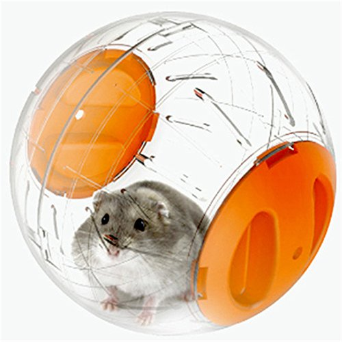 Mother Nature Costumes Homemade (RunHigh Mini Hamster Exercise Ball Run-About 6 Inch Exercise Ball)