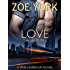 Love on the Run: The Soldier and The Country Singer (Pine Harbour Book 5)