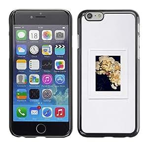 TopCaseStore / la caja del caucho duro de la cubierta de protección de la piel - Floral Art Frame Picture - Apple iPhone 6 Plus 5.5