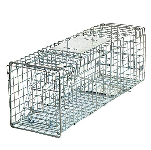 HomGarden Live Animal Trap Catch Release Humane Rodent Cage for Rabbits, Groundhog, Stray Cat, Squirrel, Raccoon, Mole, Gopher, Chicken, Opossum & Chipmunks Nuisance Rodents (24inch)