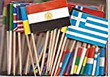 1 Box of Assorted World Toothpick Flags%
