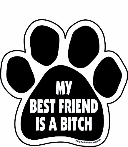 Imagine This My Best Friend is a Bitch Paw Car Magnet, 5-1/2-Inch by 5-1/2-Inch