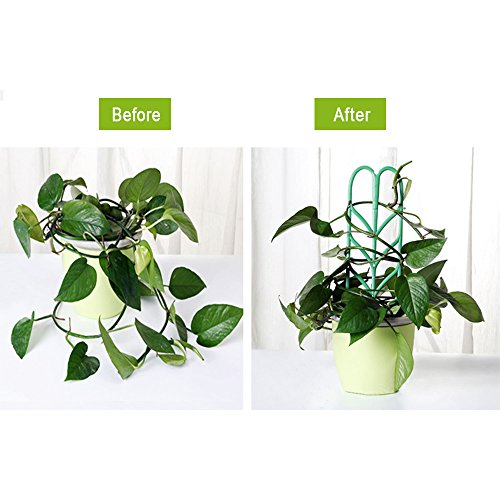 Aniann Garden Trellis for Mini Climbing Plants, Leaf Shape Potted Plant Support Vines Vegetables Vining Flowers Patio Climbing Trellises for Ivy Roses Cucumbers Clematis Pots Supports (6 Pack) by Aniann (Image #4)