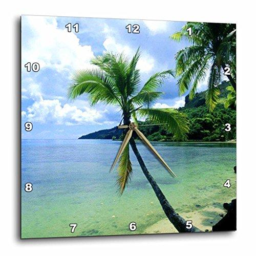 3dRose dpp_1205_3 Tropical Paradise Wall Clock, 15 by 15-Inch