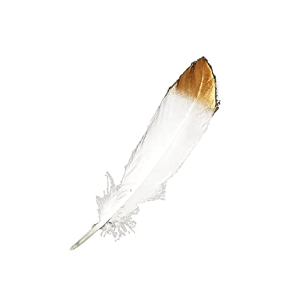 OUNONA 50pcs Plumas blancas con puntas de oro sumergidas Plumas blancas naturales para diversas artesanías Fiestas
