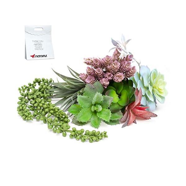 Artificial-Succulents-Unpotted-Plants-Big-9PCS-Fake-Faux-Realistic-Flowers-Fake-Plants-for-Succulent-Planter-wit-Faux-Succulents-String-of-Pearls-Cactus-and-Aloe-Plant-Assorted-Succulent-Plants