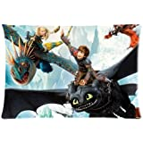 Custom How to Train Your Dragon Pattern 11 Pillowcase Cushion Cover Design Standard Size 20X30 Two Sides