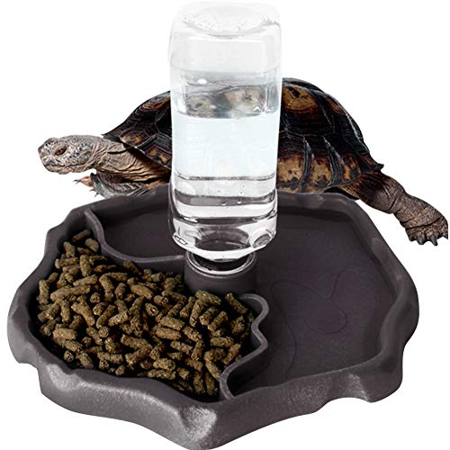 Food Leopard Tortoise (WINGOFFLY Automatic Reptile Feeders Waterer Automatic-refilling Turtle Water Dispenser Bottle Tortoise Food Water Bowl Feeding Dish for Lizards Coffee)
