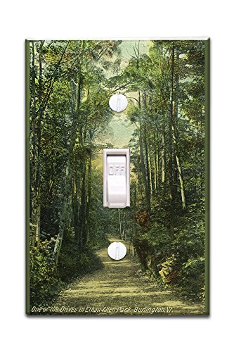 burlington-vermont-view-of-a-drive-in-ethan-allen-park-light-switchplate-cover