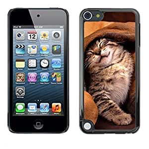Vortex Accessory Carcasa Protectora Para Apple Ipod Touch 5 - Cat Dog Ear Cute Kitten Friends Sleeping -