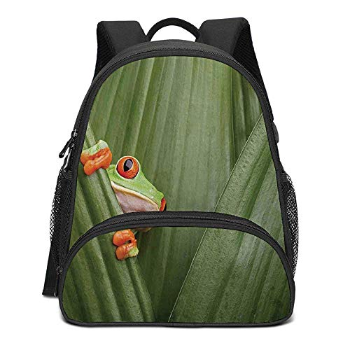 Animal Decor Durable Kids Backpack,Red Eyed Tree Frog Crowling between Leaves Tropical Jungle Rainforest Night Art for School Travel,10