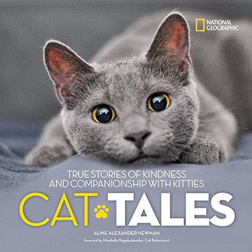 Cat Tales: True Stories of Kindness and Companionship With Kitties (Abc Halloween 2017)