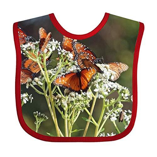 Brown Butterflies Baby Bandana Drool Bibs for Boys and Girls