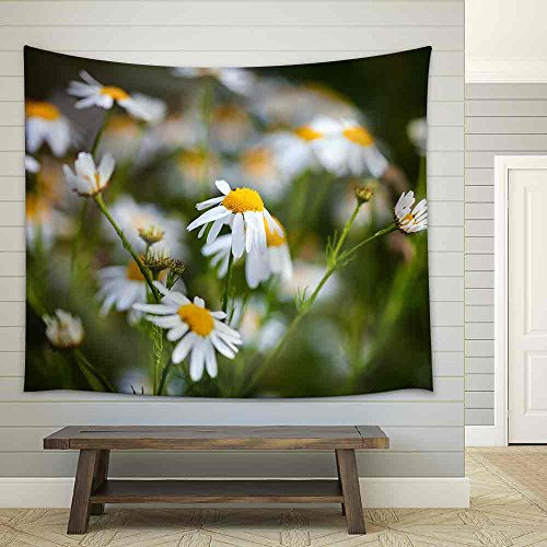 Field of Daisies on Meadow at Spring Time Fabric Wall