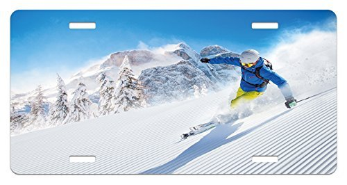 zaeshe3536658 Winter License Plate, Skier Skiing Downhill in High Mountains Extreme Winter Sports Hobby Activity, High Gloss Aluminum Novelty Plate, 6 X 12 Inches, Blue White Yellow by zaeshe3536658