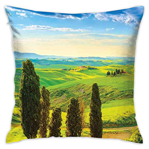 (HXIYI Home Decor Throw Pillow Cushion Cover,Rural Sunset in Italy Countryside with Trees Fresh Meadows and Clear Sky Image Print,Decorative Square Accent Pillow Case,18 X18 Inches)