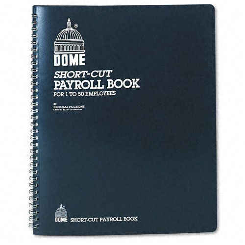 Dome® Payroll Record, Single Entry System, Blue Vinyl Cover, 8 3/4 x11 1/4 Pages by DomeSkin