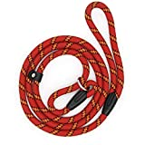 Dog Slip Rope Leash, Sweeethome Rope Lead for Pet, Adjustable Pet Leash Strong Dogs Training Leash Climbing Dog Rope Leash, 5 FT Nylon Leash for Dog Training Leash Small and Medium GOG Leash (red)