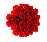 50 Farm Fresh Red Roses Bouquet | Long Stem Fresh Red Rose Delivery by BloomsyBox