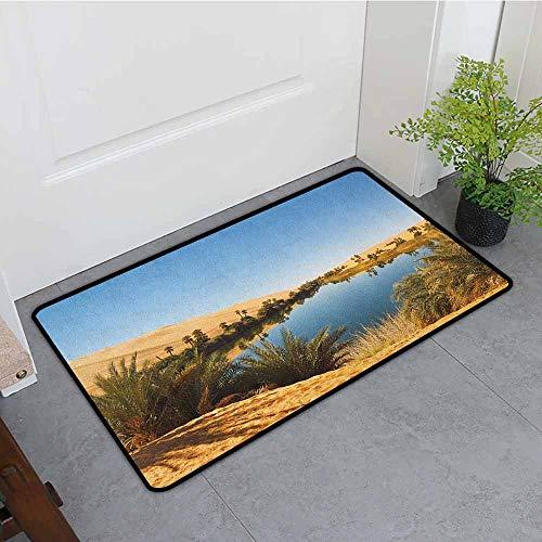 ONECUTE Pet Doormat,Desert Idyllic Oasis Awbari Sand Sea Sahara Libya Pond Lush Arid Country,All Season Universal,24