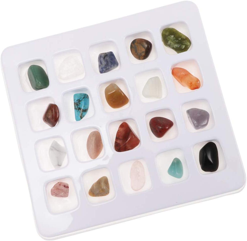 D DOLITY 15pcs Juguete Educativo de Ciencia de Geolog/ía Colecci/ón de Roca y Mineral con Hoja de /índice